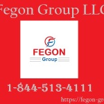 Fegon Group – 844-513-4111 – Best Network Security Solutions